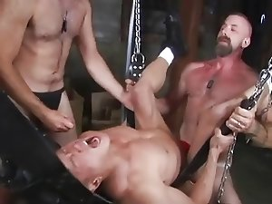 Red Stag Thick Cock Balls Deep